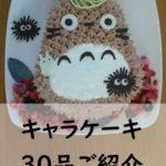 [保存版]主婦が本気で作ったお誕生日のキャラケーキレシピ厳選30品ご紹介!